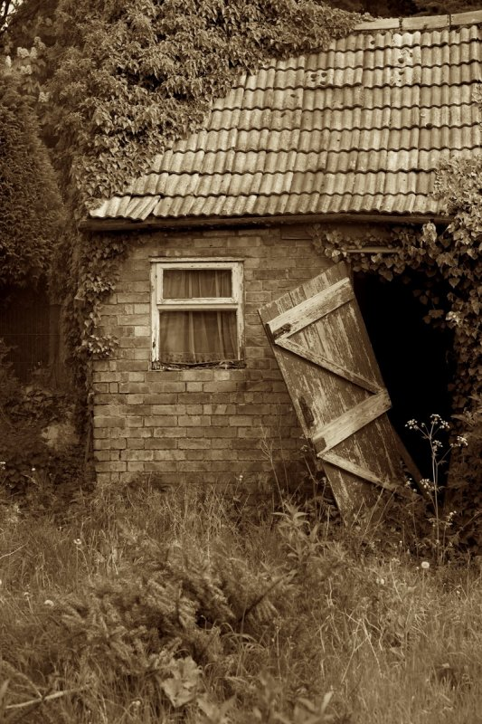 Sepia Door