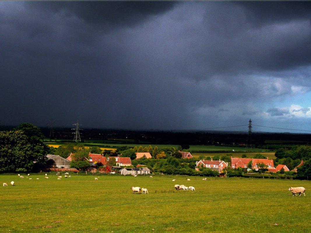 Landscape Jo WilesA.jpg