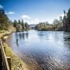 Stephen Lake SPRING ON THE RIVER TAY SCOTLAND.jpg