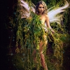 stephen_salmon-fairy.jpg