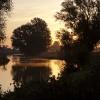 Jon Watkins - Sunlit swan on the River Great Ouse